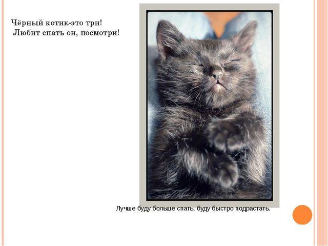 Лучше буду больше спать, буду быстро подрастать. Чёрный котик-это три! Любит...