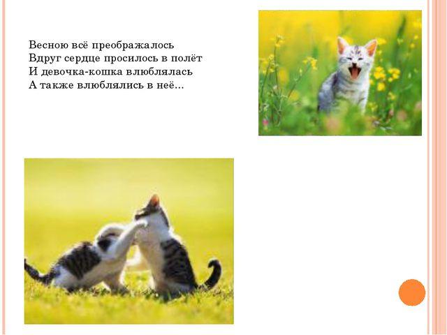 Весною всё преображалось Вдруг сердце просилось в полёт И девочка-кошка влюбл...