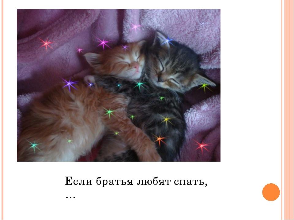 Если братья любят спать,…