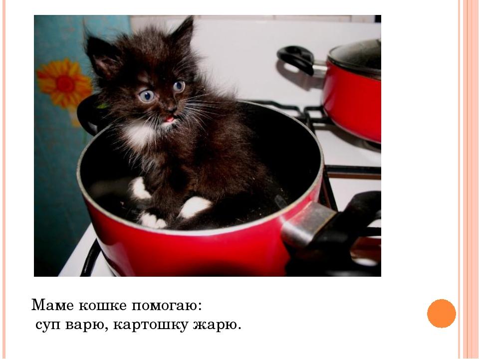 Маме кошке помогаю: суп варю, картошку жарю.