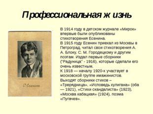 Профессиональная жизнь В 1914 году в детском журнале «Мирок» впервые были опу