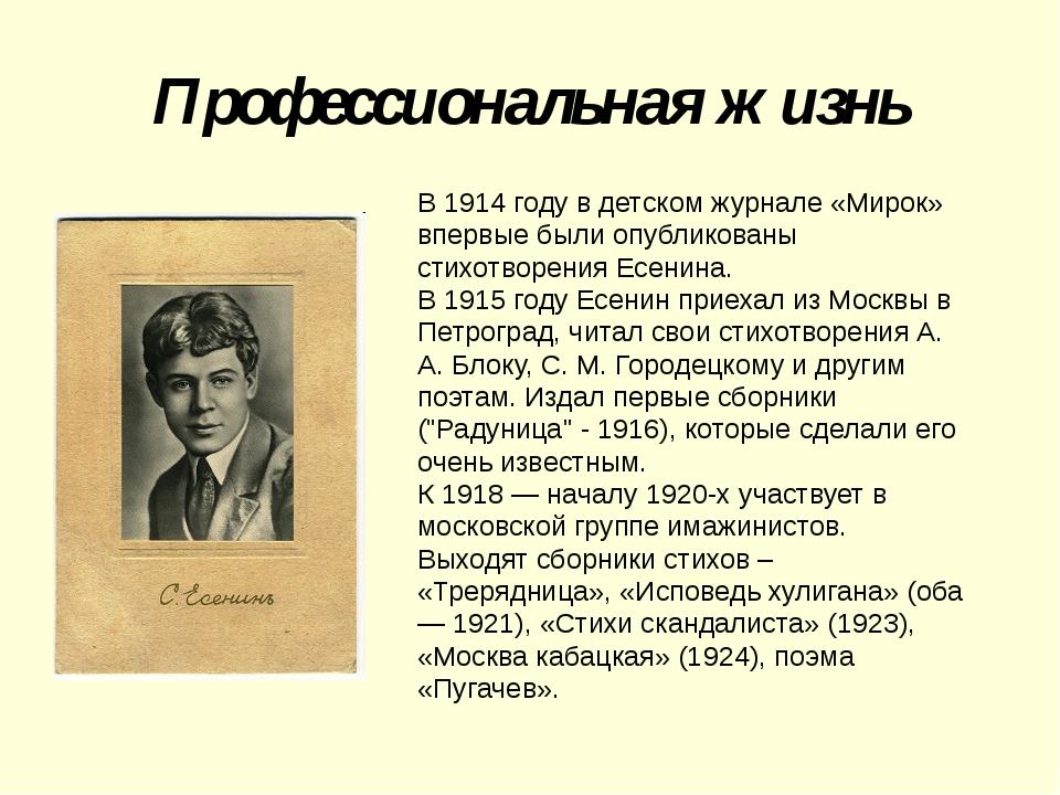 Профессиональная жизнь В 1914 году в детском журнале «Мирок» впервые были опу...