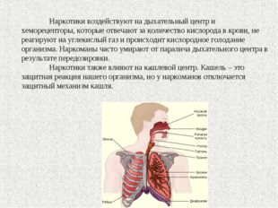 Наркотики воздействуют на дыхательный центр и хеморецепторы, которые отвечаю