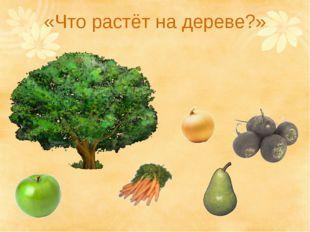 «Что растёт на дереве?»