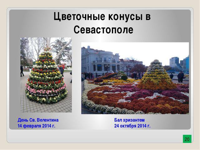 День Св. Велентина 14 февраля 2014 г. Бал хризантем 24 октября 2014 г. Цветоч...