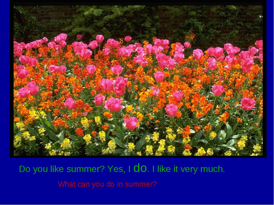 Do you like summer? Yes, I do. I like it very much. What can you do in summer?