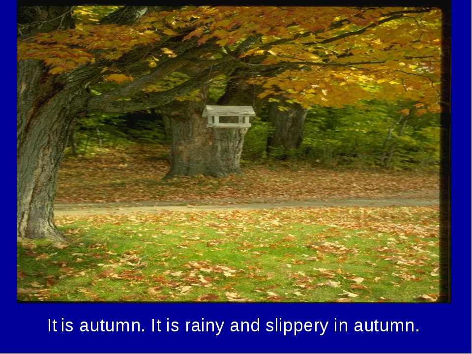 It is autumn. It is rainy and slippery in autumn.