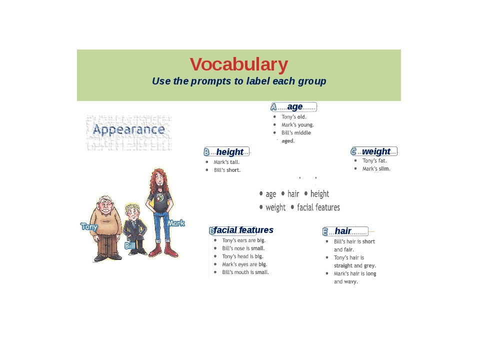 Vocabulary Use the prompts to label each group age height weight facial featu...