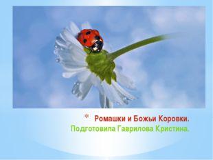 Ромашки и Божьи Коровки. Подготовила Гаврилова Кристина.