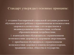 Стандарт утверждает основные принципы: ● создания благоприятной социальной си