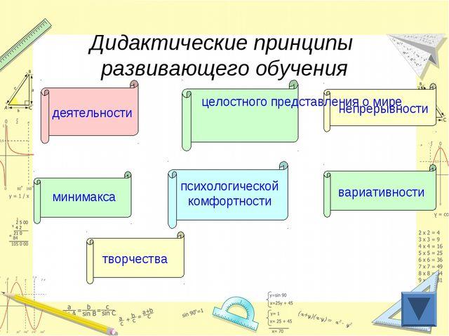 Дидактические принципы развивающего обучения