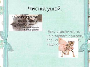 Чистка ушей. Если у кошки что-то не в порядке с ушами, если она трясёт ими, н