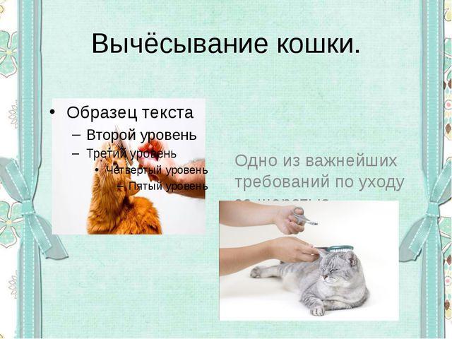 Вычёсывание кошки. Одно из важнейших требований по уходу за шерстью- вычёсыва...