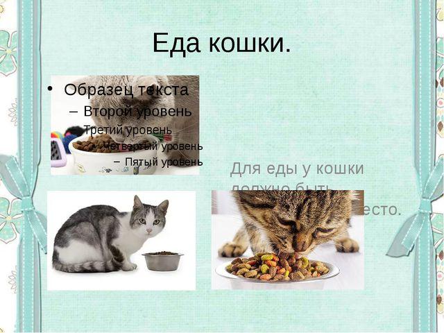 Еда кошки. Для еды у кошки должно быть определённое место.