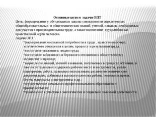 Основные цели и задачи ОПТ Цель: формирование у обучающихся школы совокупност