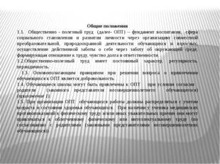 Общие положения 1.1. Общественно - полезный труд (далее- ОПТ) – фундамент вос