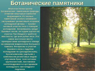 Многочисленна группа ботанических памятников природы. Отметим некоторые наибо