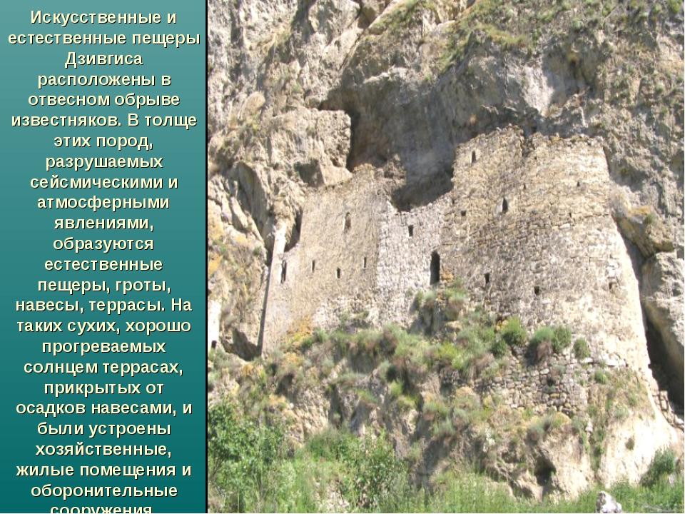 Искусственные и естественные пещеры Дзивгиса расположены в отвесном обрыве и...