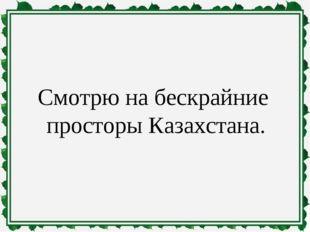 Смотрю на бескрайние просторы Казахстана.