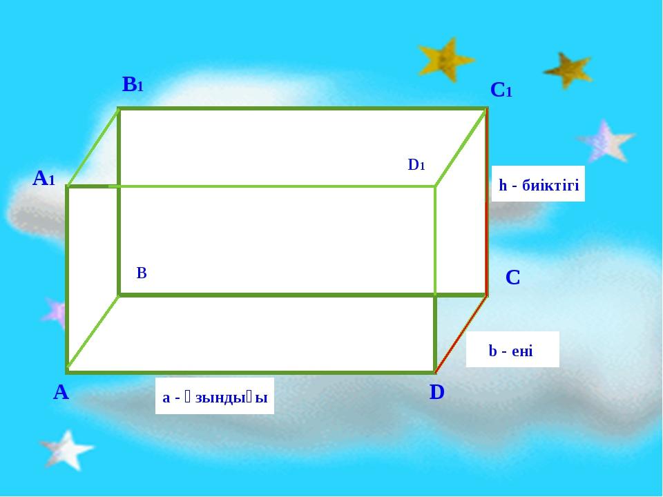 B D1 h - биіктігі b - ені a - ұзындығы D A C B1 C1 А1