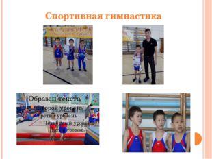 Спортивная гимнастика