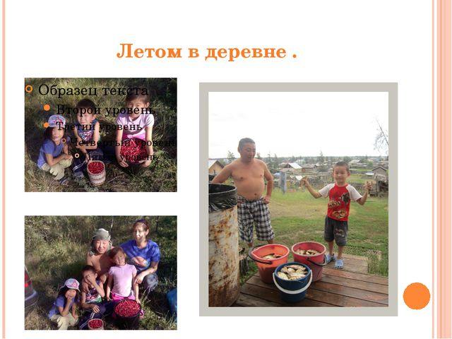 Летом в деревне .