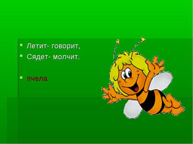 Летит- говорит, Сядет- молчит. пчела