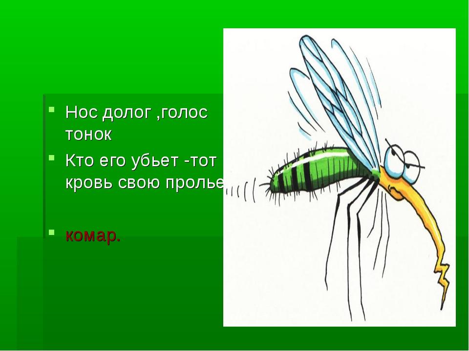Нос долог ,голос тонок Кто его убьет -тот кровь свою прольет комар.
