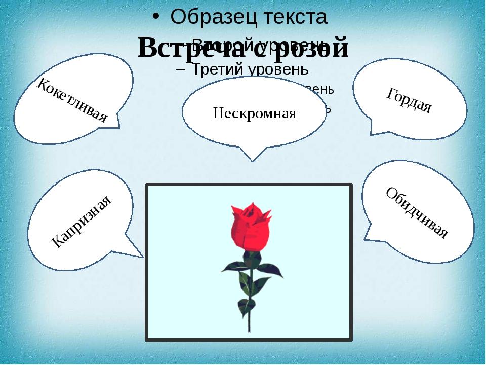 Встреча с розой Гордая Обидчивая Кокетливая Капризная Нескромная
