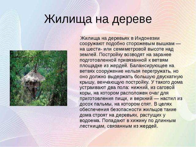 Жилища на дереве Жилища на деревьях в Индонезии сооружают подобно сторожевым...