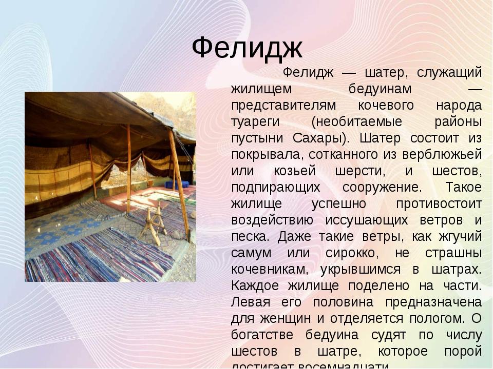 Фелидж Фелидж — шатер, служащий жилищем бедуинам — представителям кочевого на...