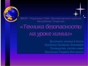 МБОУ «Усадская СОШ» Высокогорского района Республики Татарстан «Техника безо