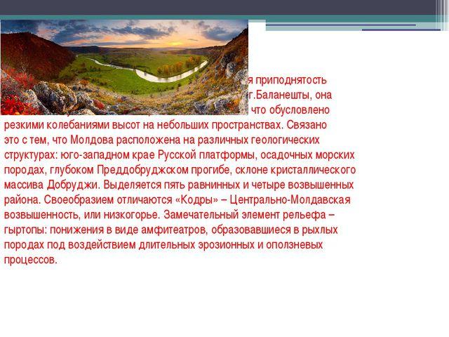 Молдова – равнинно-холмистая страна. Ее средняя приподнятость над уровнем мор...