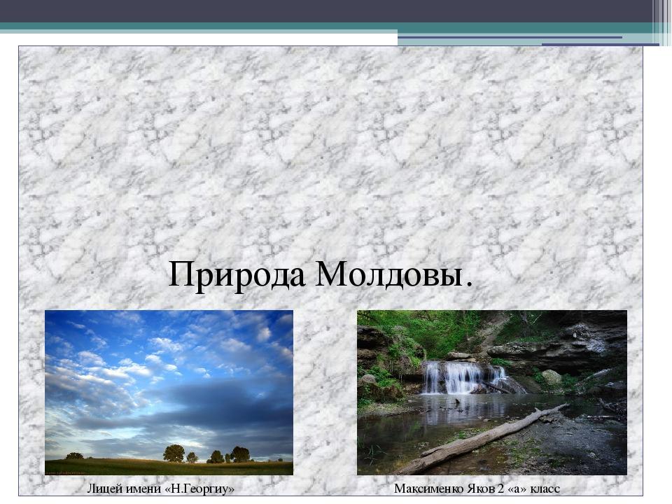 Природа Молдовы. Лицей имени «Н.Георгиу» Максименко Яков 2 «а» класс