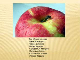 Три яблока из сада Ежик притащил. Самое румяное Белке подарил. С радостью под