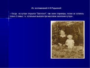 """Из воспоминаний А.Ф.Редькиной: « Когда на хуторе открылся """"Заготскот"""", там жи"""
