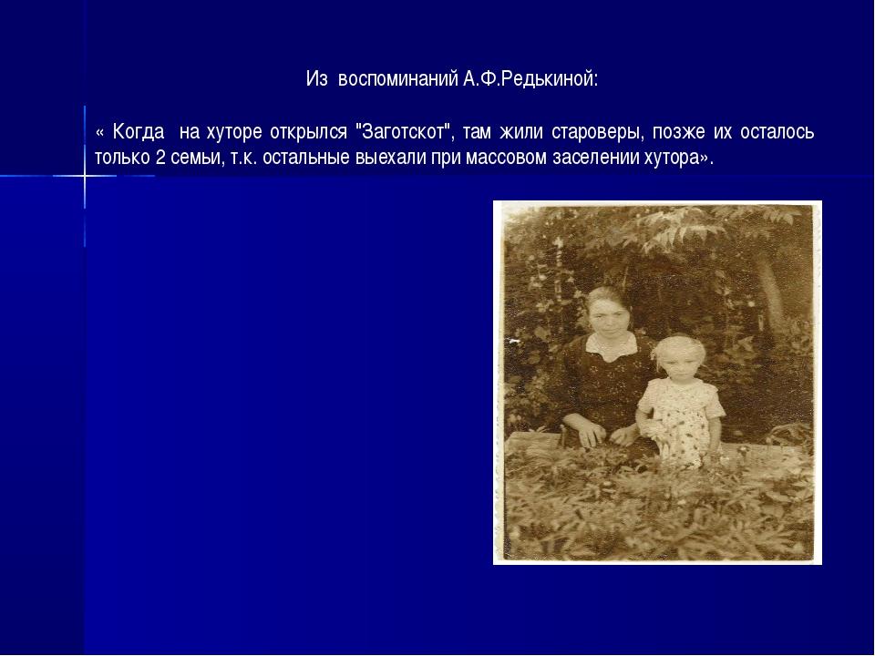 """Из воспоминаний А.Ф.Редькиной: « Когда на хуторе открылся """"Заготскот"""", там жи..."""
