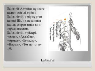 Байжігіт Байжігіт Алтайда дүниеге келген әйгілі күйші. Байжігіттің өмір сүрге