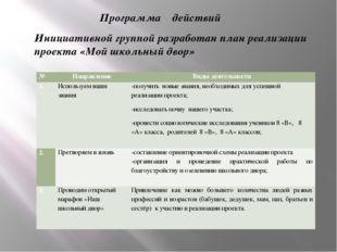 Программа действий Инициативной группой разработан план реализации проекта «М