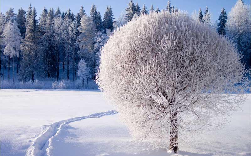 C:\Users\User\Desktop\зима.зимние забавы\83.jpg