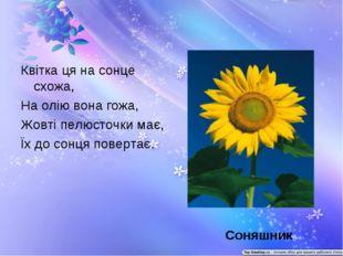 Квітка ця на сонце схожа, На олію вона гожа, Жовті пелюсточки має, Їх до сонц