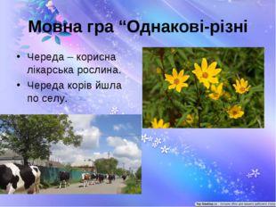 """Мовна гра """"Однакові-різні Череда – корисна лікарська рослина. Череда корів йш"""
