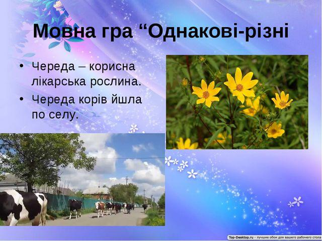 """Мовна гра """"Однакові-різні Череда – корисна лікарська рослина. Череда корів йш..."""