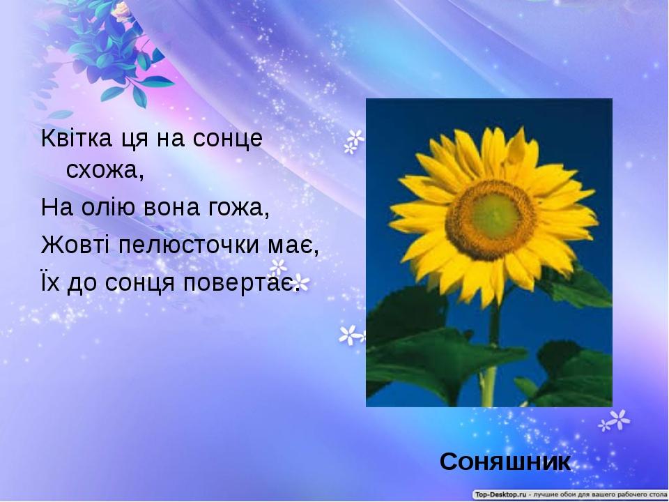Квітка ця на сонце схожа, На олію вона гожа, Жовті пелюсточки має, Їх до сонц...