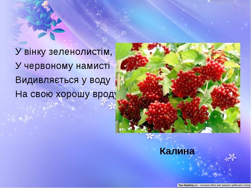 У вінку зеленолистім, У червоному намисті Видивляється у воду На свою хорошу...