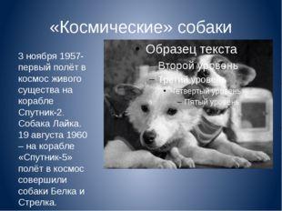 «Космические» собаки 3 ноября 1957- первый полёт в космос живого существа на