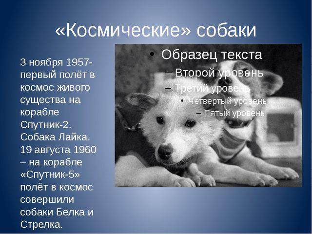 «Космические» собаки 3 ноября 1957- первый полёт в космос живого существа на...