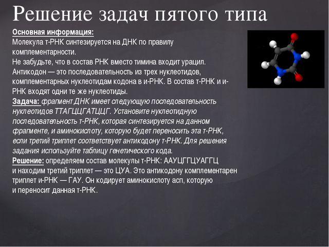 Решение задач пятого типа Основная информация: Молекула т-РНК синтезируется...