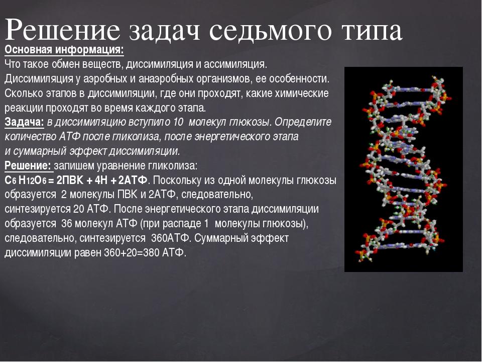 Решение задач седьмого типа Основная информация: Что такое обмен веществ, дис...