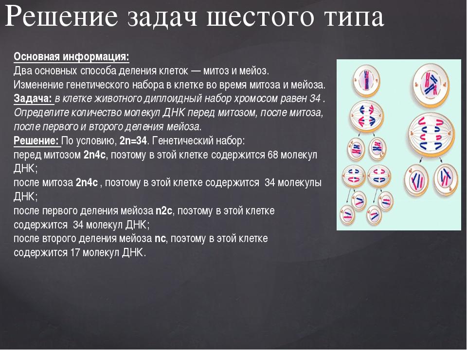 Решение задач шестого типа Основная информация: Два основных способа деления...